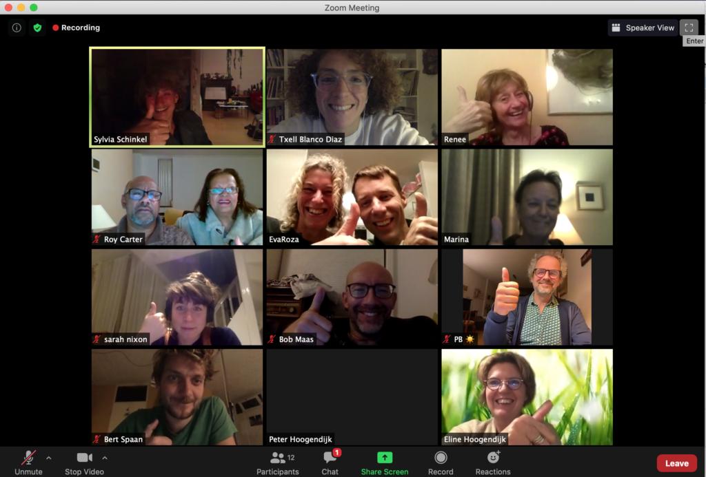 Screenshot Stroomleden tijdens Zoomvergadering